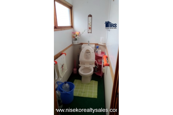Water flush toilet